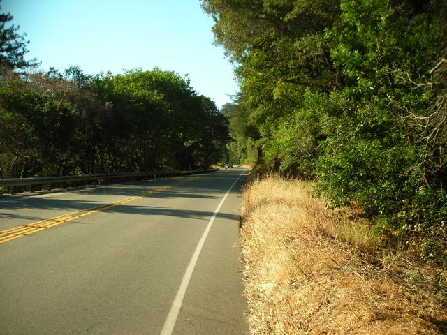 A Serene Stretch of Country Road.JPG