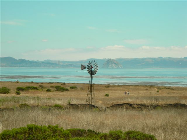 Estero Bay with Morro Rock in the Background.JPG