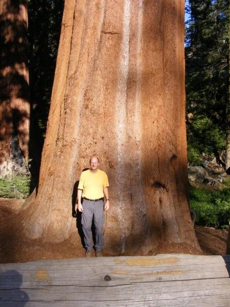 In front of a Giant Sequoia.jpg